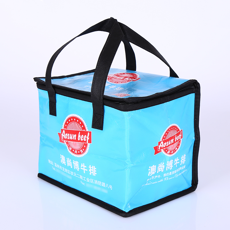 Cooler Bag 6681