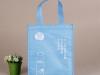 Cooler Bag 102