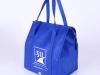 Cooler Bag 6658
